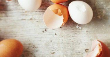 ljuske od jaja