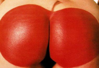 crvena jabuka logo