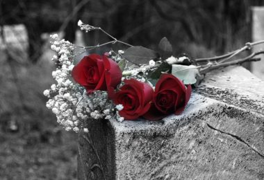 roses-on-grave